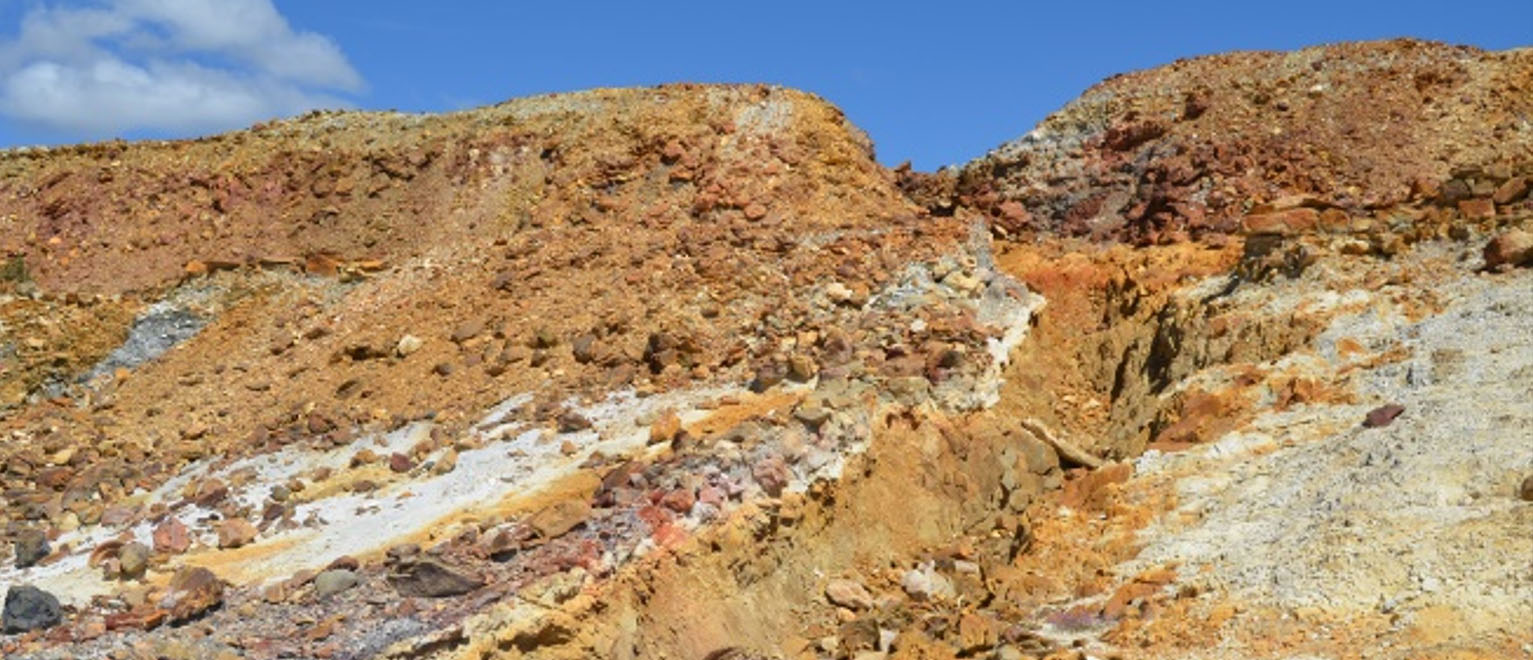 Implementation of the soil quality and vegetation cover monitoring plan in the São Domingos mining area